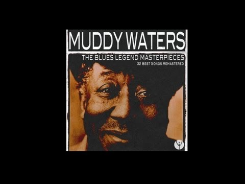 Muddy Waters - Forty Days And Forty Nights lyrics