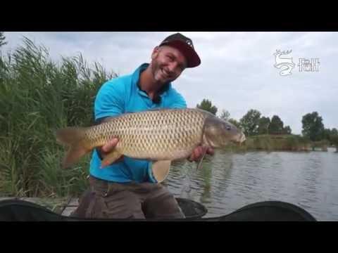 FEEDERMANIA Methoddal a Királyponty horgásztavon