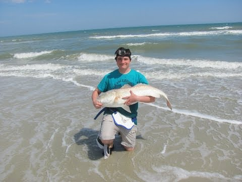 Bull Red From the Surf – Huntington Beach State Park, SC