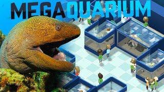 Megaquarium - Moray Eels And Giant Tanks! - Our New Aquarium - Megaquarium Gameplay