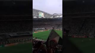 Palmeiras Campeão Brasileiro de 2016.