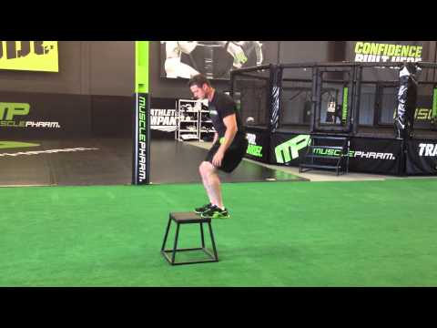 Low Box Jumps