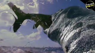 Video HIU JADI SANTAPAN! 10 MONSTER LAUT Prasejarah Paling MENAKUTKAN Di Dunia MP3, 3GP, MP4, WEBM, AVI, FLV Januari 2019