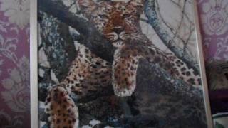 Леопард, Набор от Риолис, Готовая работа,