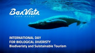 Boa Vista Cabo Verde - Biodiversity International Day 2017
