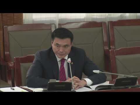 Х.Булгантуяа: Чөлөөт бүст үйлчлэх татварын хөнгөлөлтийн талаар хуулийн төсөлд хэрхэн туссан бэ?