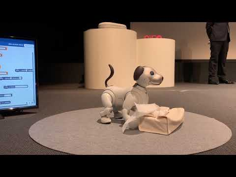 Robot Dog Aibo con software scratch