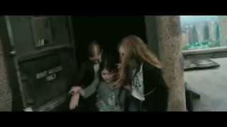 Polacy dostają pierd*lca! Zaj*biście zrobiona reklama bitwy o karpia w Lidlu!