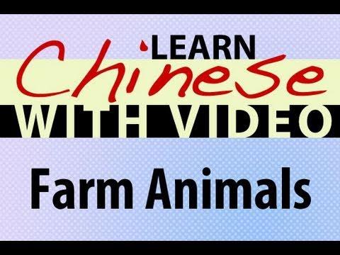 Tiere auf dem Bauernhof - Chinesisch Vokabeln