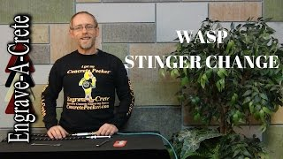 How to Change a Stinger in a Wasp