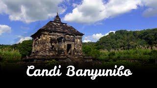 Eksotika Candi 'Si Sebatang Kara' Banyunibo