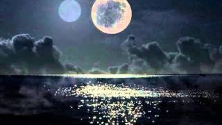 Arthur H - Le baiser de la Lune- (Adieu tristesse)