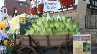 Leinfelden-Echterdingen Germany  city pictures gallery : Filderkrautfest in Leinfelden-Echterdingen