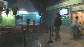 The National Film Museum, BeiJing 北京