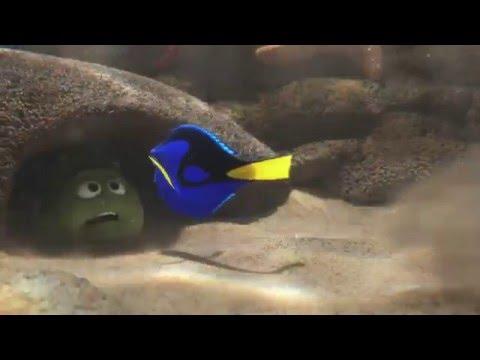 Pixar lanza nuevo tráiler de Buscando a Dory