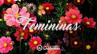 05/07/2017 - CULTO F(É)MININAS - PRA. HELENA TANNURE