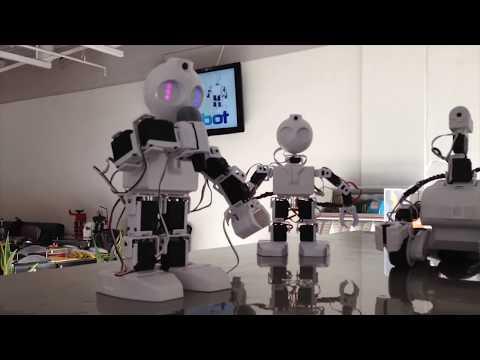 EZ Robot JD Humanoid