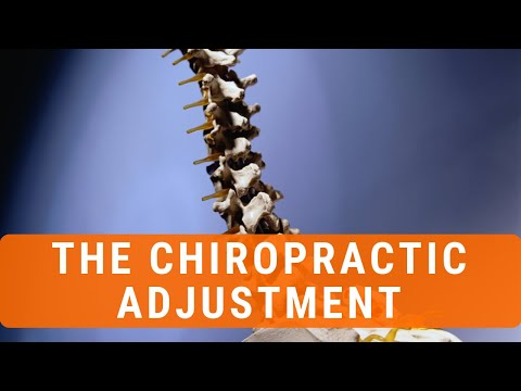 The Science Behind The Chiropractic Adjustment