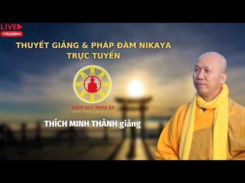 Tinh Hoa NIKAYA - Nghệ Thuật Sống An Vui 2 | Thích Minh Thành