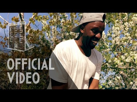 Shad - The Fool Pt 1 (Get it Got it Good) (Official Video)
