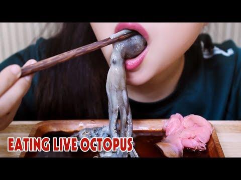 ASMR LIVE octopus challenge (exotic food) eating sound part 2|LINH-ASMR