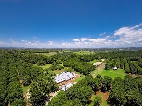 Prestigious 260 Acre Hinterland Property With Spectacular Views