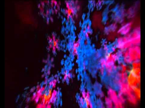 Matta - Matta - Closer ( DMT scene from enter the void )