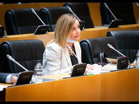 Ana Zurita, en la Comisión de Transportes, Movilidad y Agenda Urbana