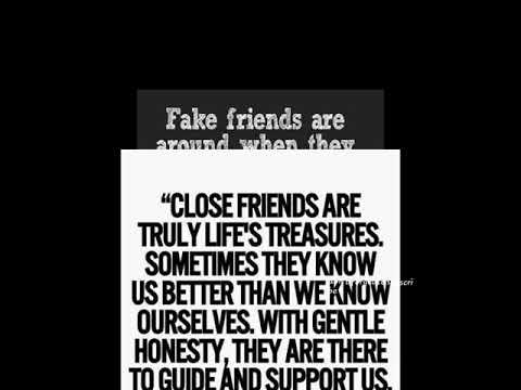 Friendly friendship quotes /english