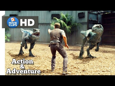 Jurassic World Hindi Raptors Move Back! Action & Adventure Scene MovieClips