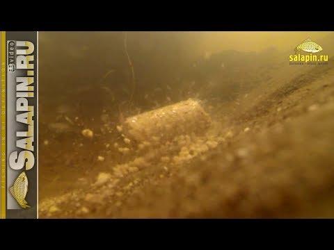 салапин каша рыбалка