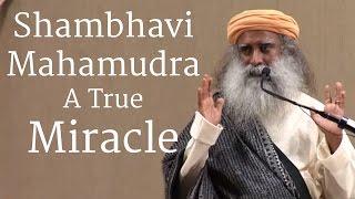 Shambhavi Mahamudra, A True Miracle - Sadhguru