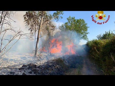 Waldbrand auf Sardinien - ein Ort wurde geräumt