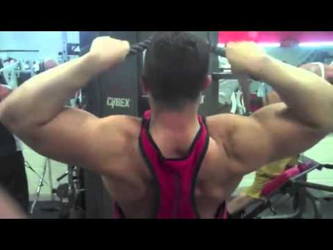 Natural Bodybuilding – Supplements, Back and Biceps