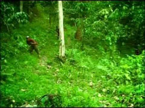Film aceh angen badeba part 4 of 8