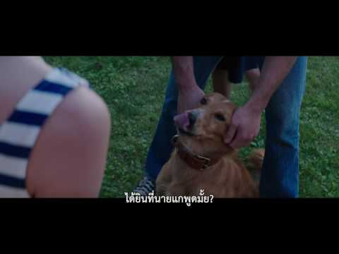 A Dog's Purpose | Film Clip 2 | Thai sub
