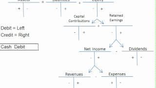 ✅ Expanded Accounting Equation Videos - by Stagevu.com
