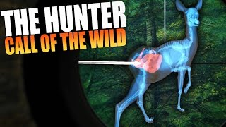 The Hunter: Call Of The Wild - HUNTING DEER, AMAZING ASS SHOT - The Hunter Gameplay