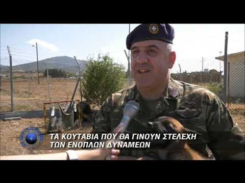 Κουτάβια-μελλοντικά στελέχη Ενόπλων Δυνάμεων | 22/09/2019 | ΕΡΤ