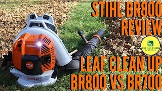 5. STIHL BR800 Blower Review | BR800 vs BR700 | Fall Leaf Clean Up