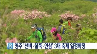 영주 '선비.철쭉.인삼' 3대 축제 일정확정