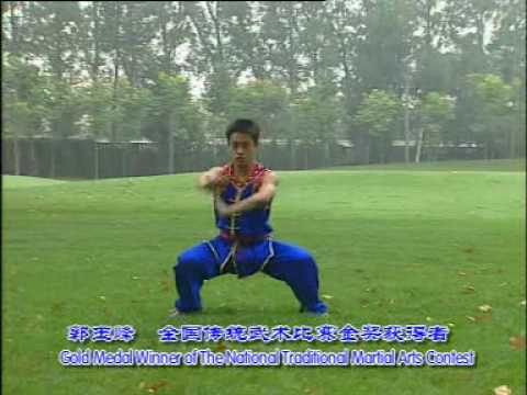 Wushu Nan Quan 1