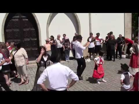 Carreto Riba de Mouro 2012 (видео)