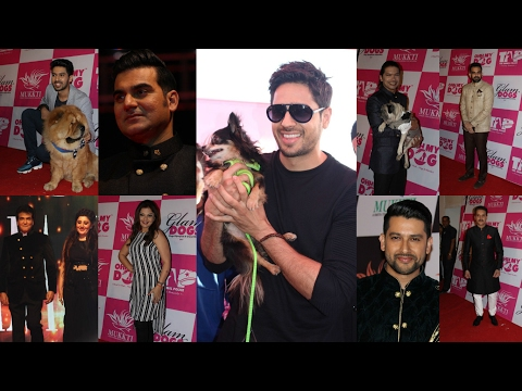 Celebs Walks The Ramp For Glamdogs Show Organized By Smita Thackeray