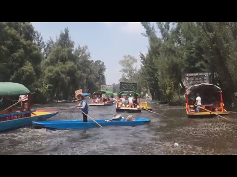 American Tourists Capture Video of Mexico's Deadly Earthquake During Boat Ride