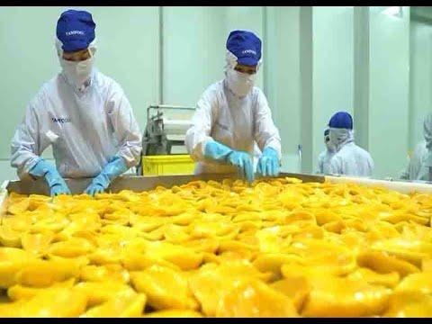 Tăng cường giao thương nông sản Việt Nam – Nhật Bản