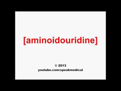 Pronounce Aminoidouridine | SpeakMedical