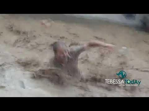 تبسة شاهد الفيديو الكامل للشخص الذي قفز في مجرى الفيضانات بتبسة