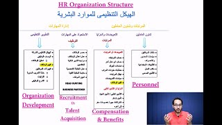 شرح هيكل ووظائف الـ HR