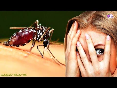العرب اليوم - شاهد : لماذا يلسع البعوض بعض الناس